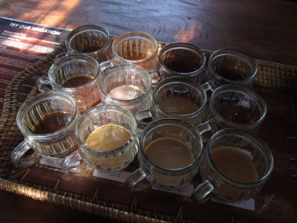 Balinese coffee & tea sampler